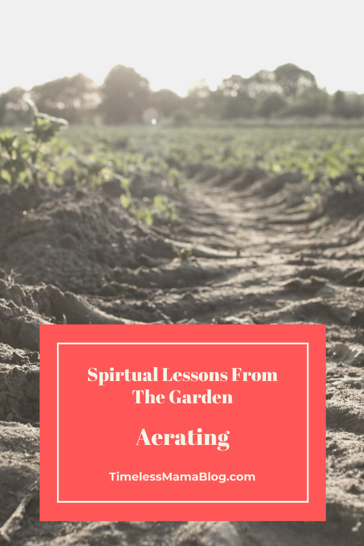 Aerating-Lessons From The Garden