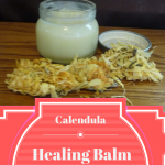 Calendula Infused Healing Balm