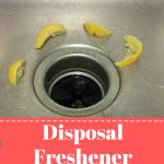 Disposal Freshener