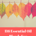 116 Essential Oil Diffuser Blends For Autumn