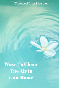 Natural Ways To Clean The Air In Your Home