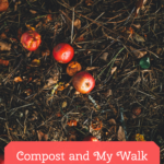 Compost and Walking With Christ.